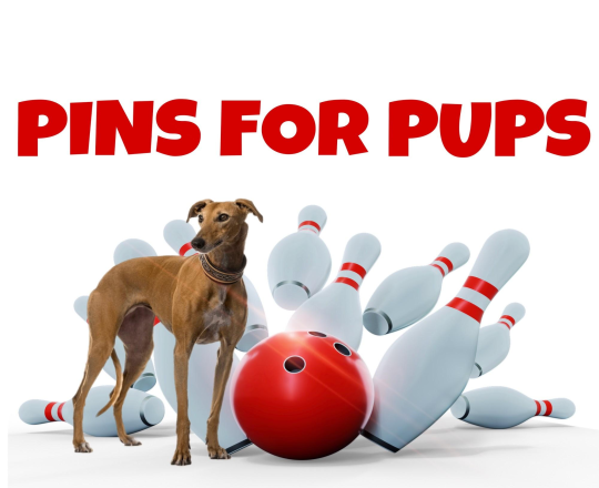 Pins for Pups